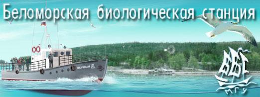 Беломорская биологическая станция МГУ